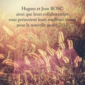 Carte de voeux 2012 / Agence BOSC