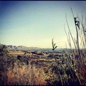 La vallée des baux Marrel Saint remy de provence