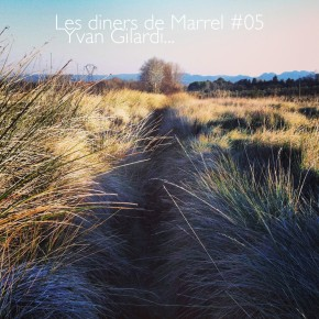 Yvan Gilardi - Les Diners de Marrel 05 - Saint-Rémy de Provence 01 - Restaurant Gastronomie copie - Copie